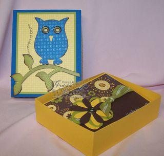 Owl_box_003