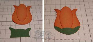 Flower_merged_b