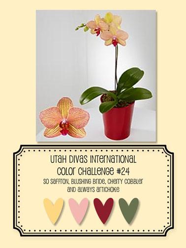 Udi_color_024_inspiration